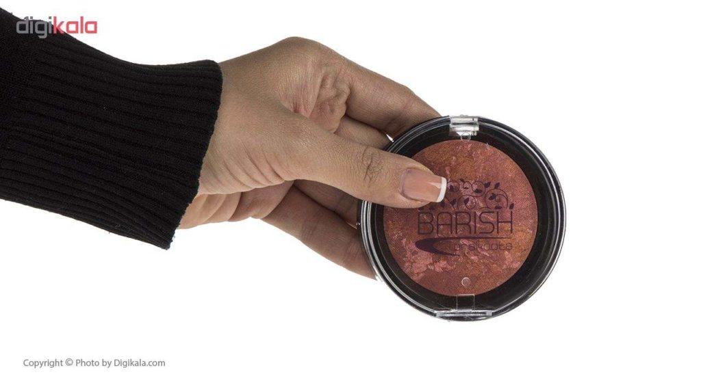 خرید رژگونه تراکوتا باریش مدل Silky touch شماره 206